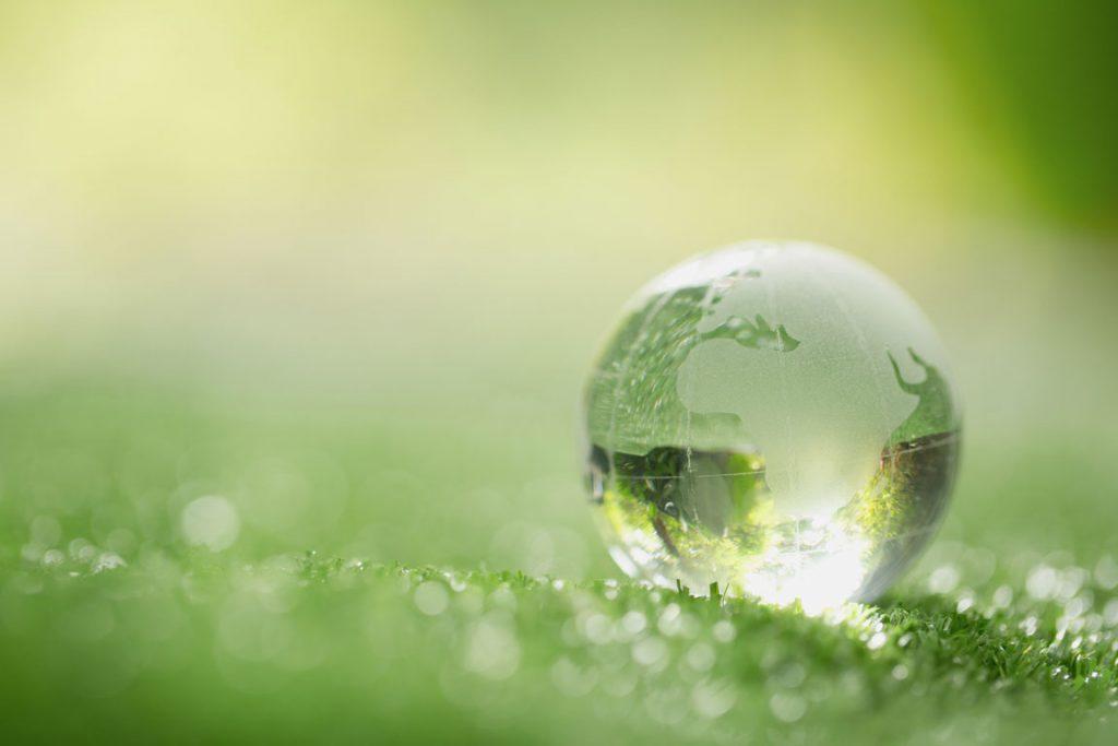 Nachhaltigkeit in Kiel Foerdegruen Blog
